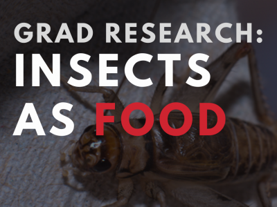 Photo for the news post: Grad Research: Insects as Food