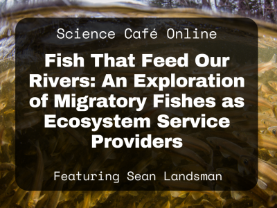 Photo for the news post: Online Science Café – Join Sean Landsman for an Exploration of Migratory Fishes as Ecosystem Service Providers