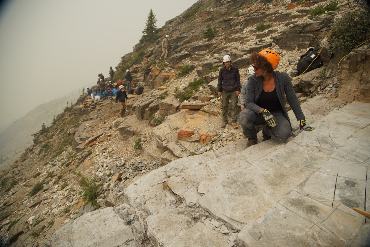 Maydianne Andrade at the Burgess Shale with the field crew of Dr. Jean Bernard Caron (Royal Ontario Museum) during filming of First Animals (the Nature of Things).