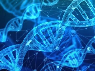 Photo for the news post: Bioinformatics