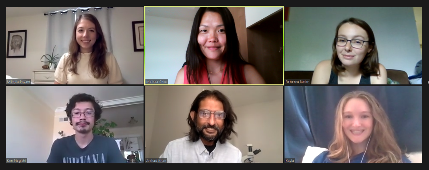 All members of the research group in a screengrabbed Zoom meeting