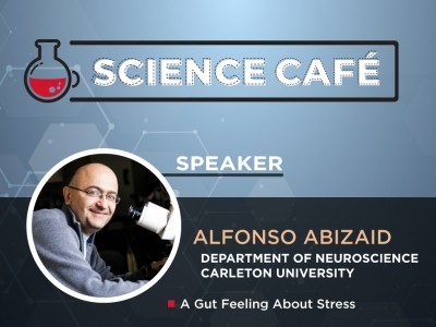 Photo for the news post: Online Science Café – A Gut Feeling About Stress